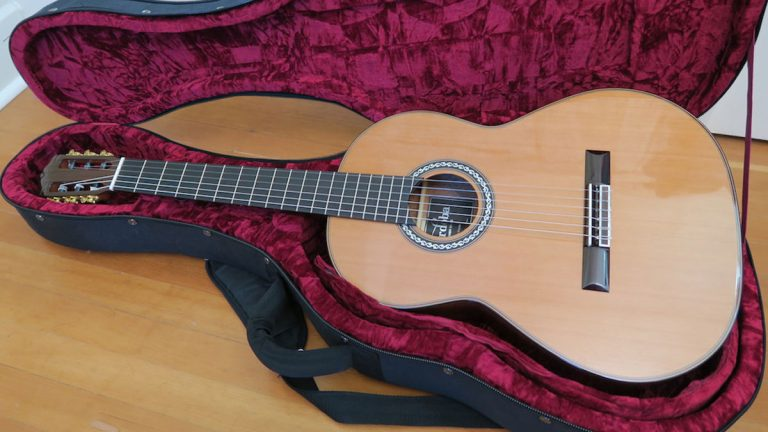Best Cordoba C9 Review in 2020: Reviews & Buying Guide